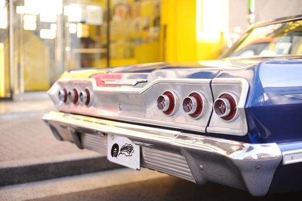 impala_3